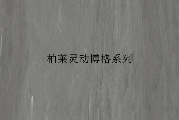 郑州柏莱灵动博格